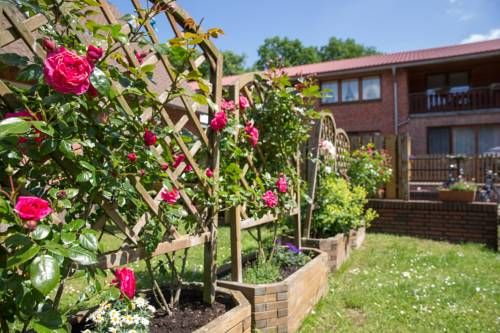 Ferienhof Heins Undeloh Set amidst lush, green surroundings, Ferienhof Heins overs bright apartments just a 2-minute walk from the scenic heath. Located in Undeloh, guests are offered horse carriage rides from the property.