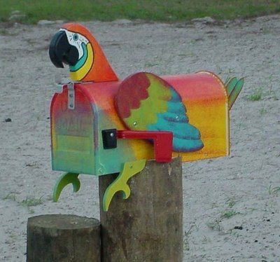 I NEED TO SO MAKE THIS FOR STEVE!! #macaw #parrot