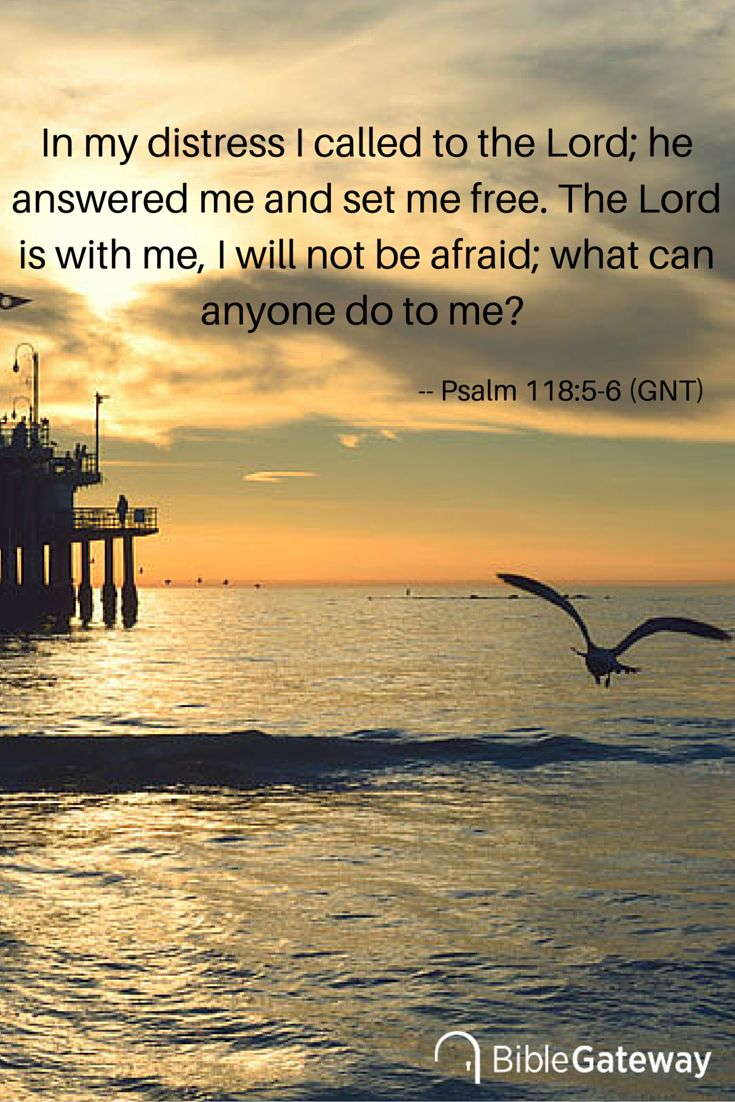 In my distress I called to the Lord; he answered me and set me free. The Lord is with me, I will not be afraid; what can anyone do to me? -- Psalm 118:5-6 (GNT)