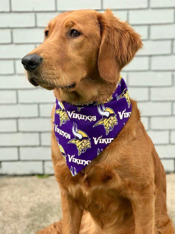 Adorable Golden Retriever Skol Vikings Reversible Pet Bandana Vikings And Footballs Etsy Pet Bandana Vikings Pets