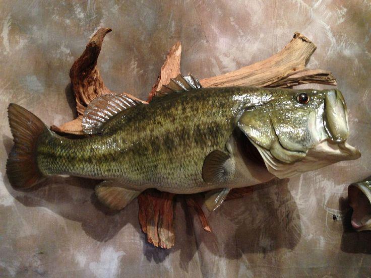 Elite Bass Replicas Taxidermy Fish Fish Mounts Bass
