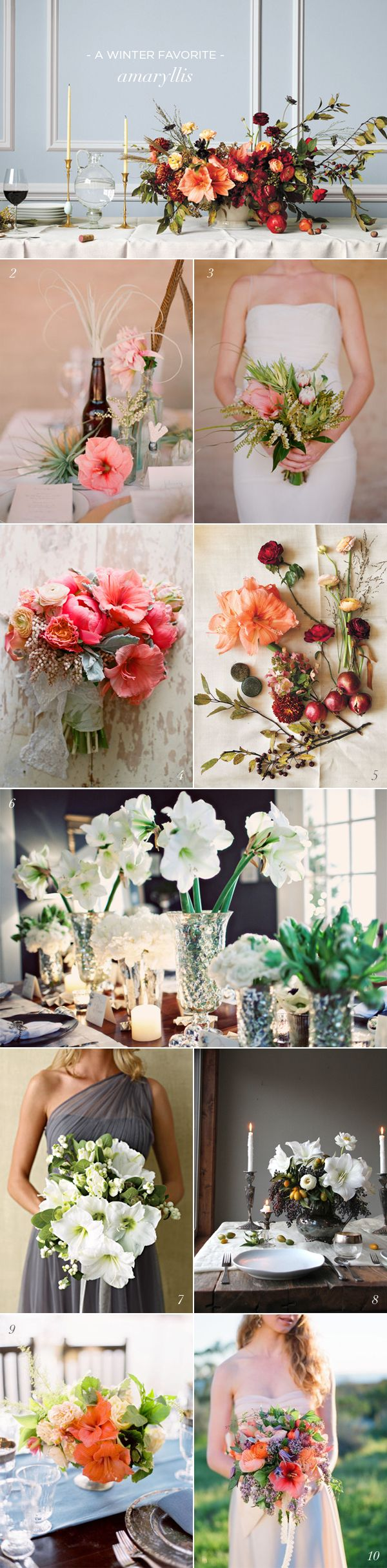 Amaryllis Wedding Flower inspiration board - casual elegance for wedding bouquets