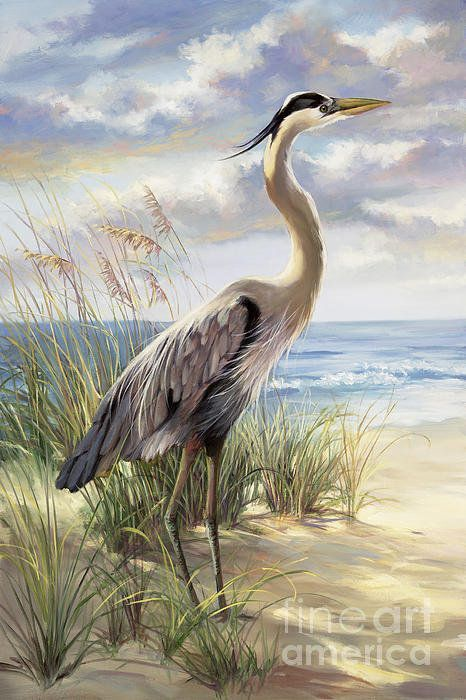 1000+ ideas about Bird Canvas Paintings on Pinterest | Triptych ...
