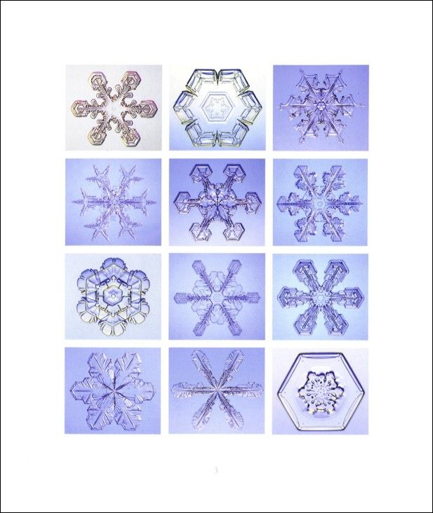 #Snowflakes: combining #macro #art, #quotes, and #science; each of these #snowflake #books is a different type of #book, using the micro- #photography created to capture #snow #crystals and uniquely balancing that #beauty with varied information, #photos and books by Kenneth Libbrecht