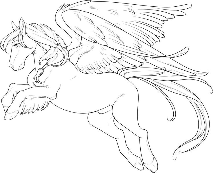 horse with wings large coloring pages for kids printable horses coloring pages for kids