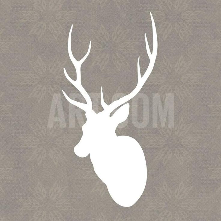 Buck I Art Print by Sabine Berg at Art.com