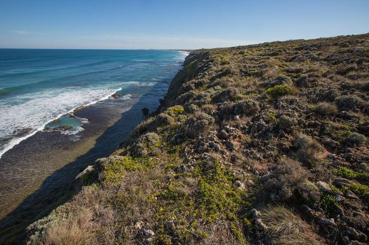 Lot 1/616 Hopkins Point Road, Warrnambool VIC 3280, Image 3