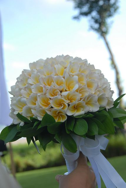 Frangipani Wedding hand bouquet by Bali Holidays Wedding, via Flickr