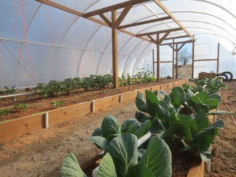 Geothermal Greenhouse Garden: March 25, 2015 - YouTube
