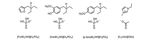 First ionic liquid made from plant waste  The researchers made four ionic liquids from lignin and hemicellulose © NAS