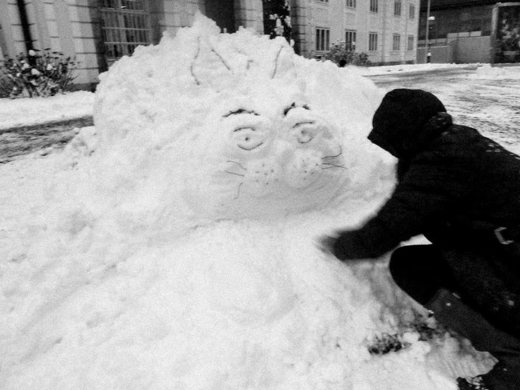 Vendar se nismo samo kepali, naredili smo tudi snežake! No, snežne mačke in ... / But but snowball fight wasn't all we did! We made some lovely sonwmen - well, snowcats and ...