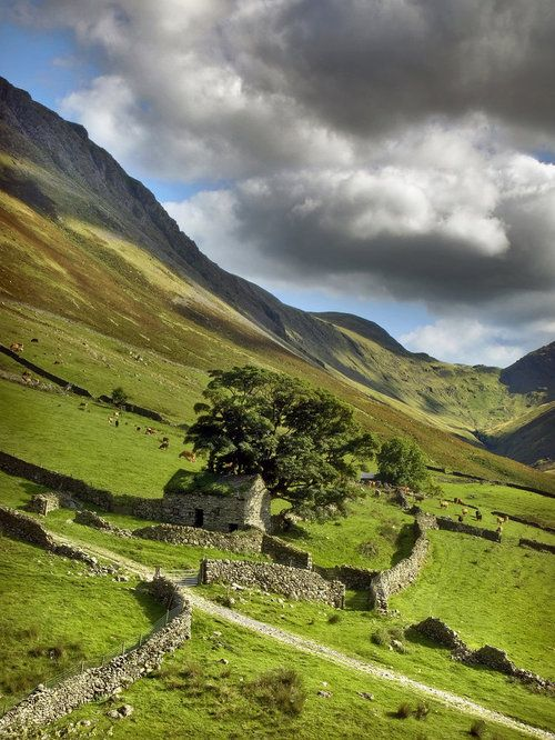 Ancient Stone House, Yorkshire, England  photo via knight