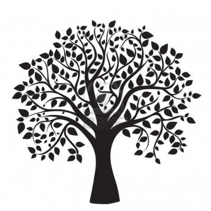 Best 25+ Tree silhouette ideas on Pinterest | Family tree drawing, Simple tree tattoo and Family ...