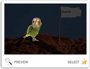 You're Out Of This World: New Year pet ecard