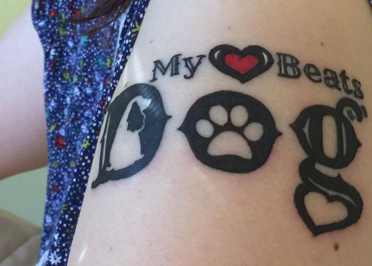 To celebrate Love Your Pet Day, I've asked my pet blogging friends to share what they love about their pets or how they show their pets how much they love them | Love Your Pet Day 2016