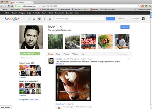 Guide to Google+...written for food bloggers but author's insights work for any site.