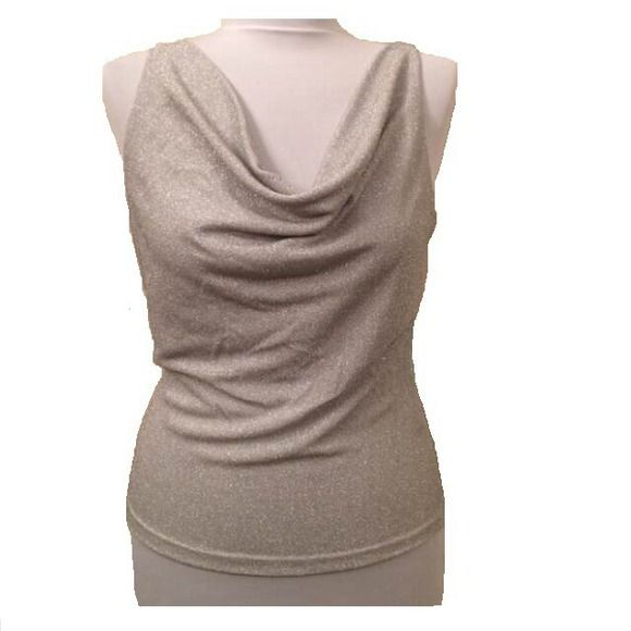 Sparkly silver top Gorgeous top for a night out! Cut small Tops