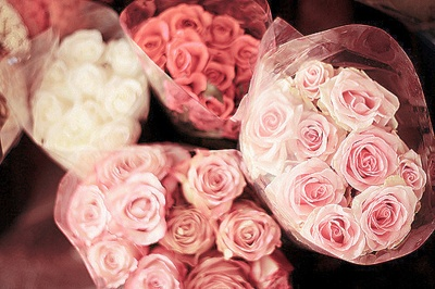 <3: Pink Flowers, White Rose, Flowers Girls, Bouquets, Valentines Day, Red Rose, Fresh Flowers, Pink Rose, Flowers Shops
