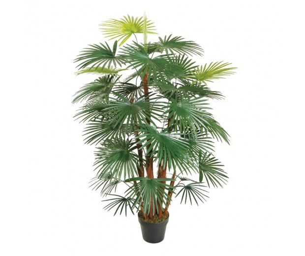 artificial fortunei palm spacegreen