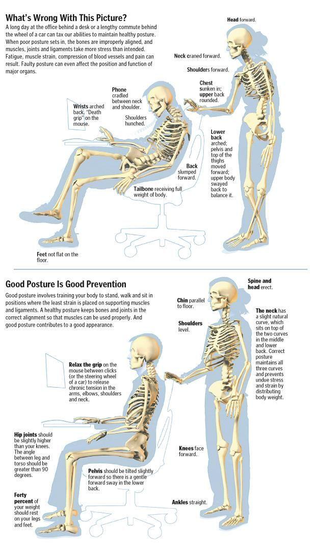 Posture Infographic https://www.pinterest.com/pin/573646071264558633/ …