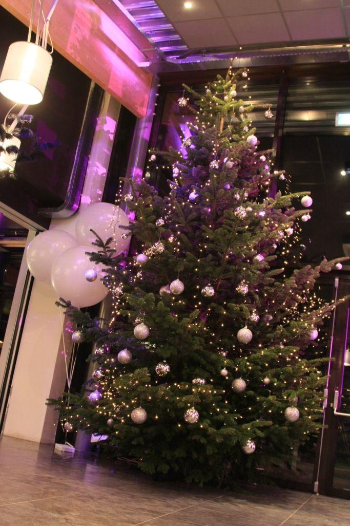 Villa Westend - Kerstboom