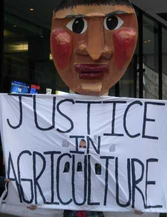 """And with justice, comes sustainability! """"Governments and international agencies  urgently need to boost   ecological farming techniques to increase food production and save the climate"""",   said UN Special Rapporteur on the Right to Food, Olivier De Schutter"""