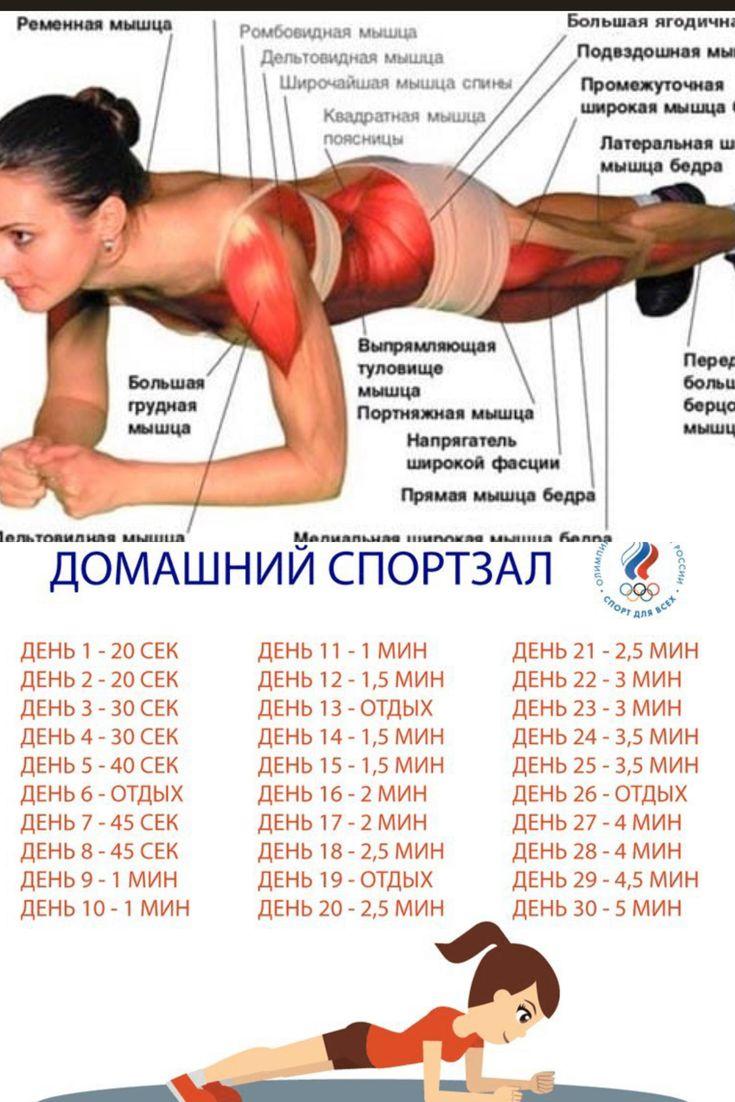 Планка 30 дней таблица для похудения отзывы