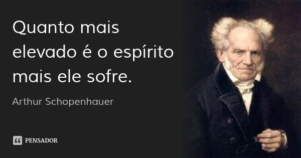 Quanto mais elevado é o espírito mais ele sofre. — Arthur Schopenhauer