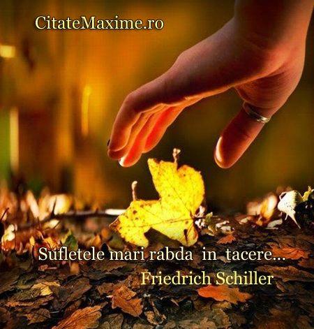 """""""Sufletele mari rabda in tacere..."""" #CitatImagine de Friedrich Schiller Iti place acest #citat? ♥Distribuie♥ mai departe catre prietenii tai..."""