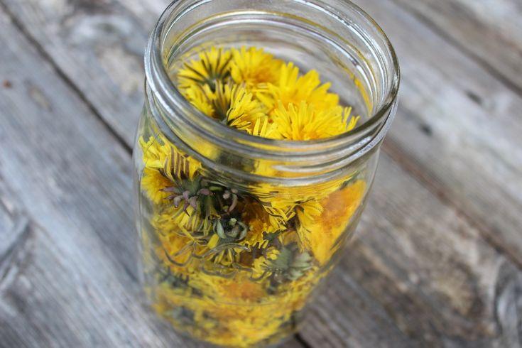 5 receptů na omlazující elixíry - 1. část - Slunečný život