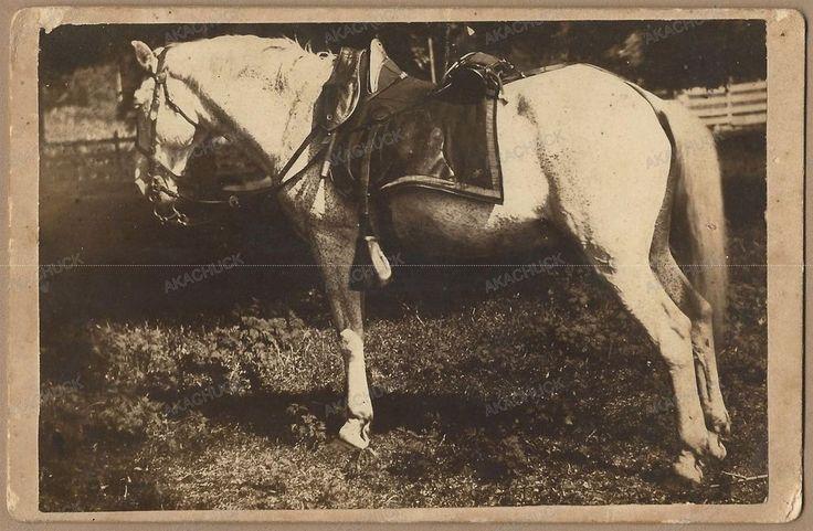 Rare CIVIL WAR BATTLE HORSE Cabinet Card COLONEL Lt NJ Hall GETTYSBURG Antietam