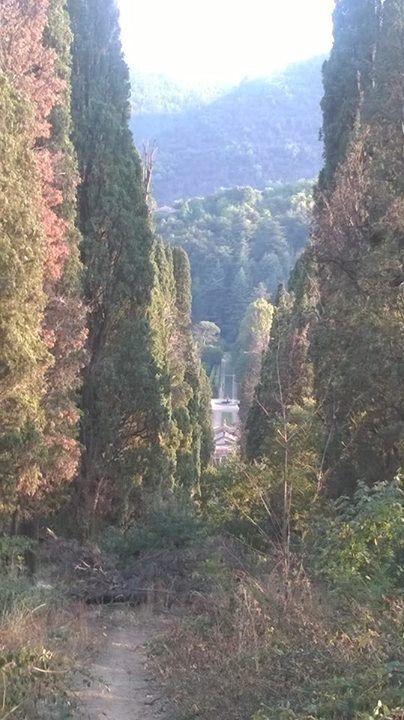 Villa Barbarigo con vista dai sentieri dei colli euganei sovrastanti