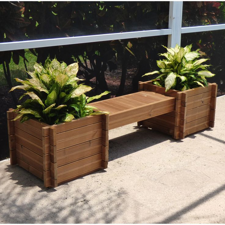 Add The Vibrant Life Of Plants With This Thermod Modula