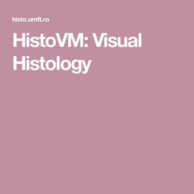 HistoVM: Visual Histology