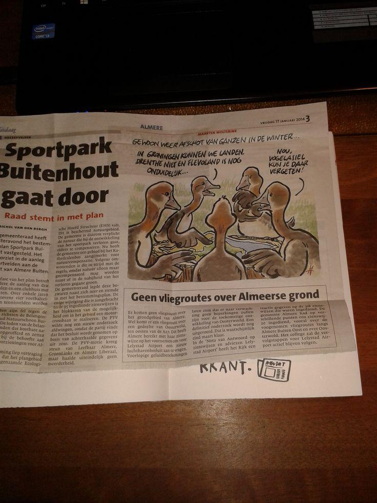kranten artikel