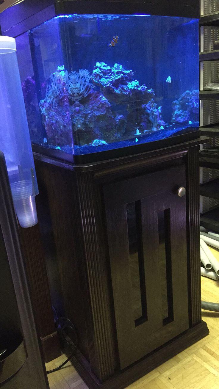 Fish tank cabinet za - 29 Gallon Bio Cube With Custom Stand Made By Hooked On Reefs Http Aquarium