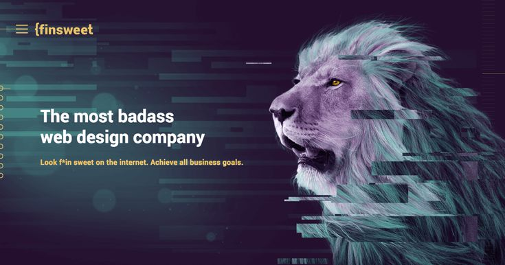 Finsweet offers the best value in web design and branding. We take your investment and focus on the most important goals for your company's growth.
