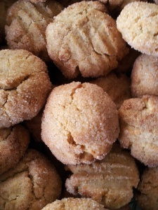 Snicker doodles , dairy free