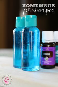 Homemade Pet Shampoo With Essential Oils - Just as effective as the ones you can buy, but this smells better and is safe for pets!