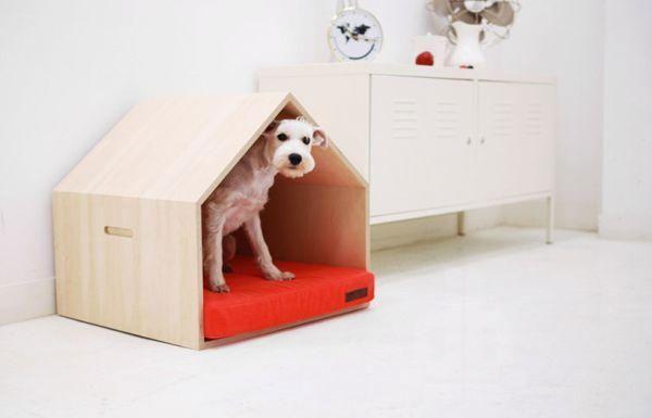 ¡Camas para perros: cómodas y muy decorativas!