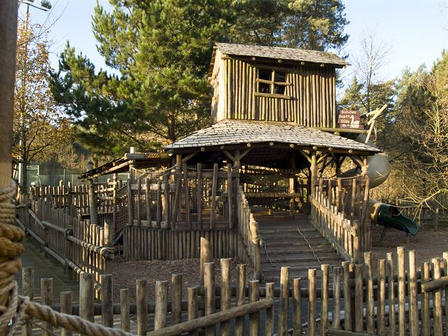 Backyard Treehouse Pediatric Therapy Center : 1000+ images about Center Parcs  Sherwood Forest on Pinterest  Night