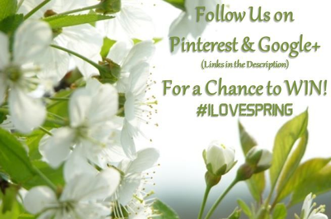Follow us on #Pinterest and #Google+ for a chance to win BIG! #ILOVESPRING Pin.rst (http://ow.ly/ZLZO3) G+ (http://ow.ly/ZM0e0)