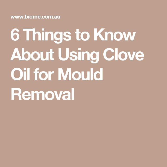 6 Things to Know About Using Clove Oil for Mould Removal