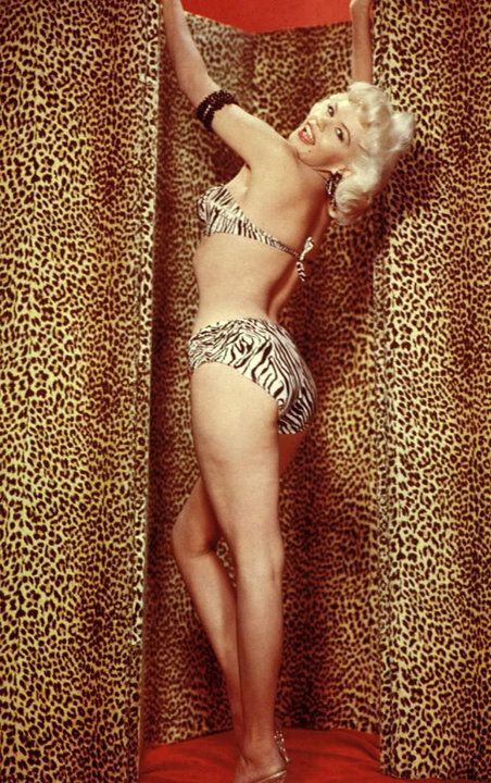 Zebra print bikini, leopard print background and Jayne ...