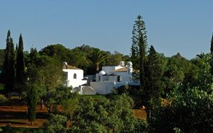 Read the Casa Arte, Algarve hotel review on Telegraph Travel. See great photos, full ratings, facilities, expert advice and book the best hotel deals.