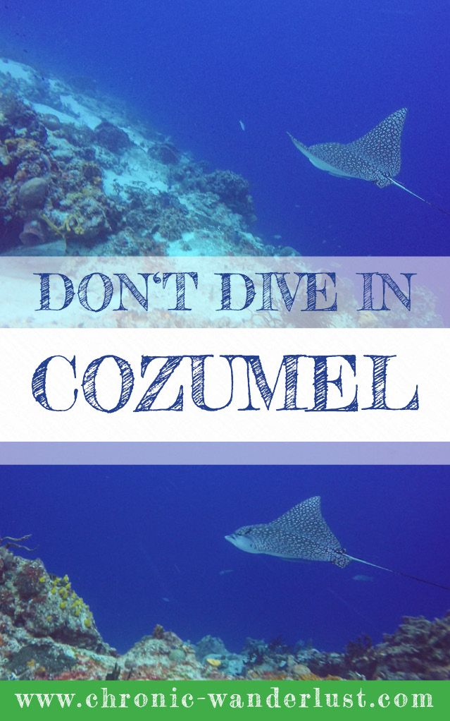 Diving in Cozumel is out of this world - when you start diving here you will never want to dive anywhere else!