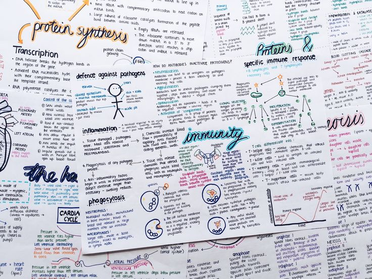 "revisereblogrevise: "" Just a few of my Biology posters """