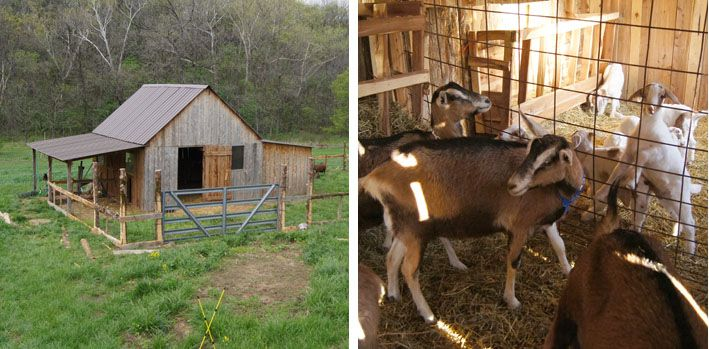 Outbuildings A Collection Of Ideas To Try About Gardening