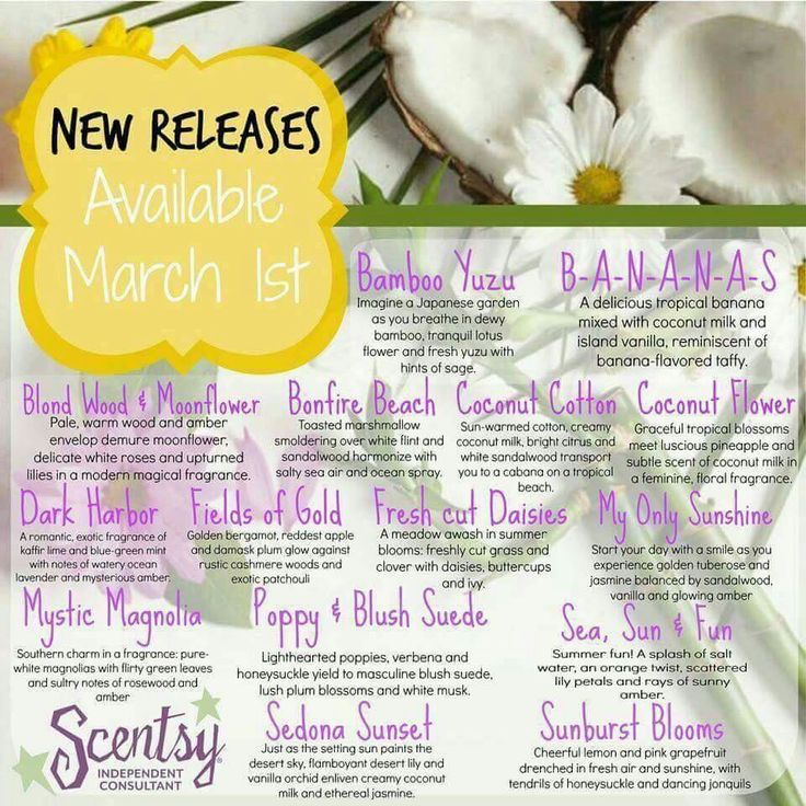 New scents for spring and summer https://vandaway.scentsy.ca