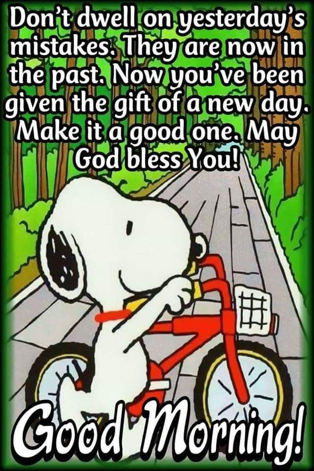 Pin by Donna Dopheide on Quotes and Words   Snoopy quotes